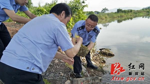 新田收缴放生一批野生动物 其中有虎纹蛙等国家二级保护动物