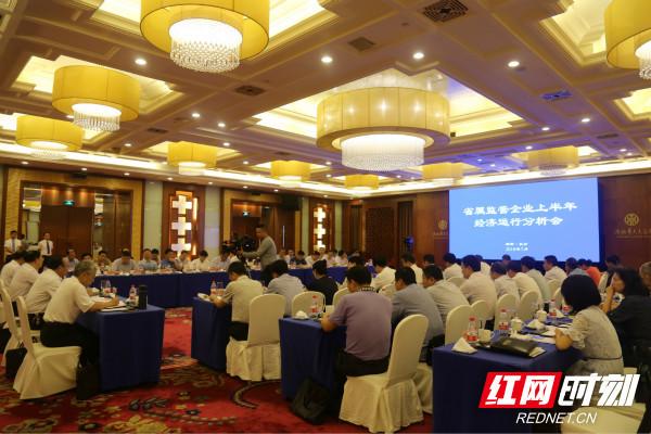 省国资委在长沙召开监管企业上半年经济运行分析会