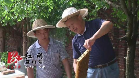 """彭程宇:古稀老人半世纪的""""甜蜜""""坚守"""