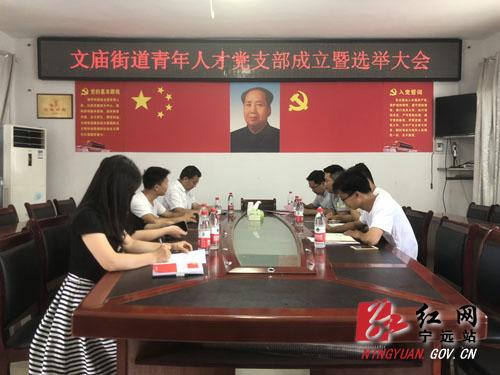 宁远县文庙街道成立青年人才党支部
