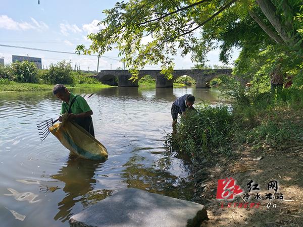 冷水滩区普利桥:村民齐心共护母亲河