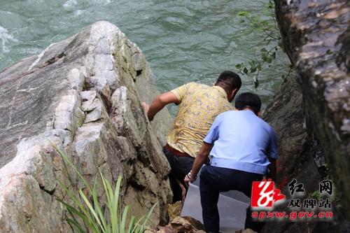 """双牌县首次发现国家二级保护野生动物""""娃娃鱼"""""""