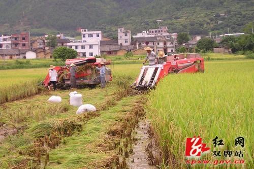 农民专业合作社助推农村经济发展