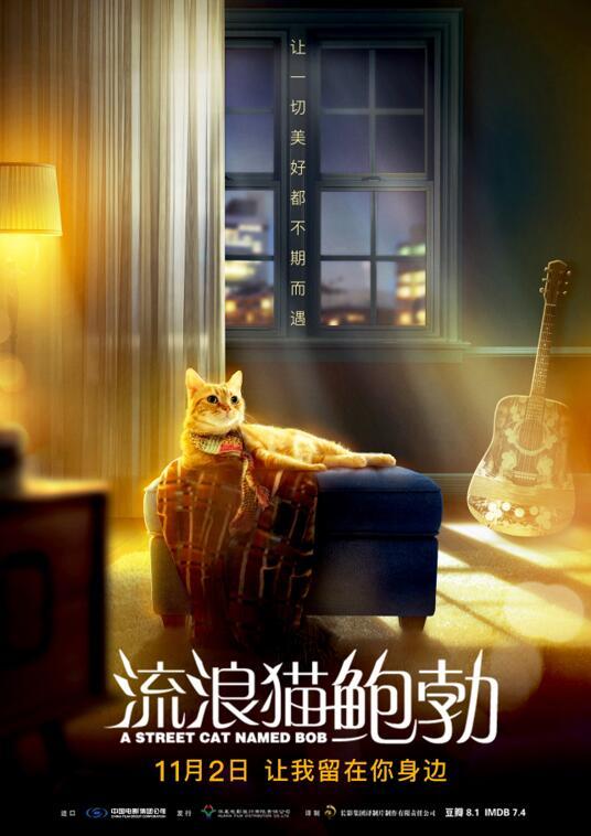 《流浪猫鲍勃》终极海报预告双发 萌值演技双高获赞无