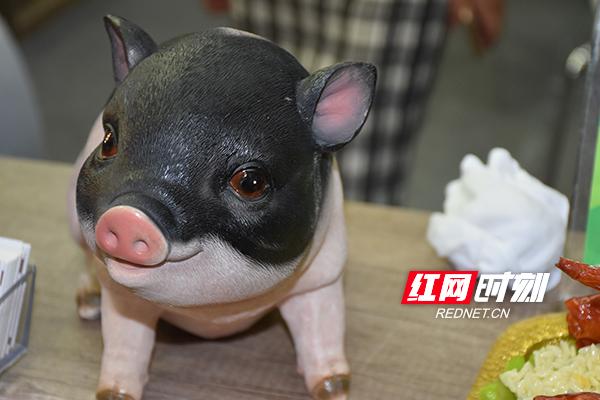 """""""萌萌�}""""乳�i占��新加坡70%市�龀5绿禺a亮相�r博��"""