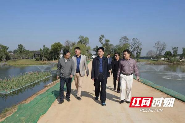 """岳阳南湖新区立行立改""""僵尸船""""等六大环保问题"""
