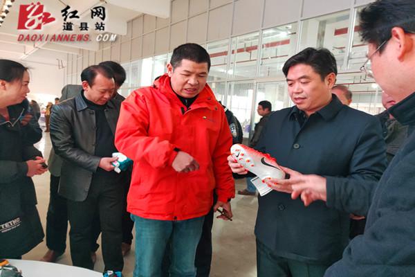 道县县领导调研指导产业项目建设和乡村振兴工作
