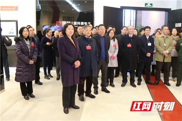 湖南省人大常委会组织部分全国人大代表开展集中视察