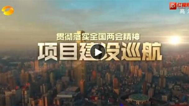 """视频丨湖南开展""""产业项目建设年""""活动 力推经济高质量发展"""