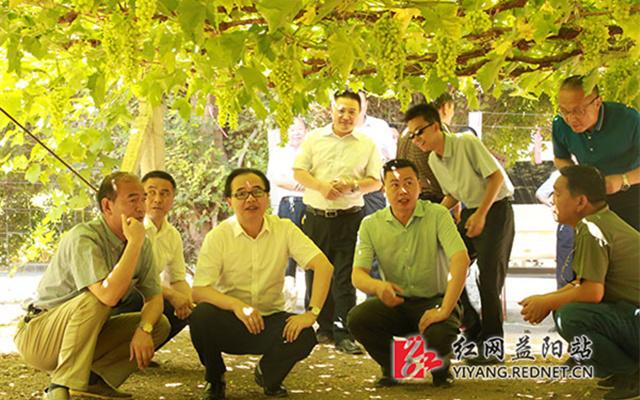 益阳市党政代表团赴吐鲁番考察对口援疆工作