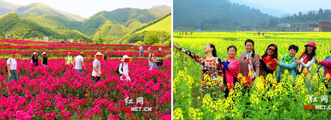 零陵:乡村美景入画来