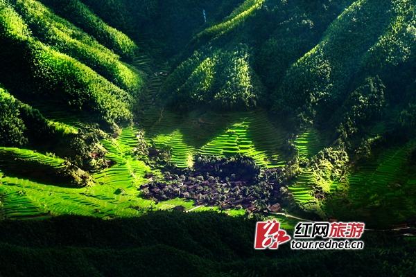 神奇绿洲,美丽姑娘丨这里是大美绥宁,了解一下