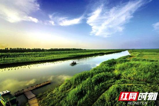 常德呵护水系和湿地 留给大自然一封最美情书