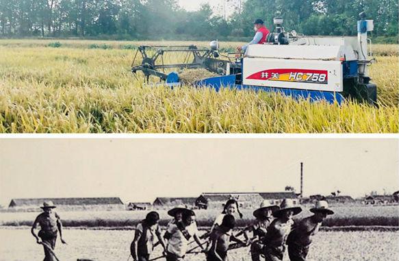 改革开放40年|9张图带你看小岗村40年巨变